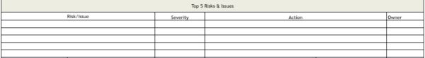 top 5 project risks & issues listing in status reporting