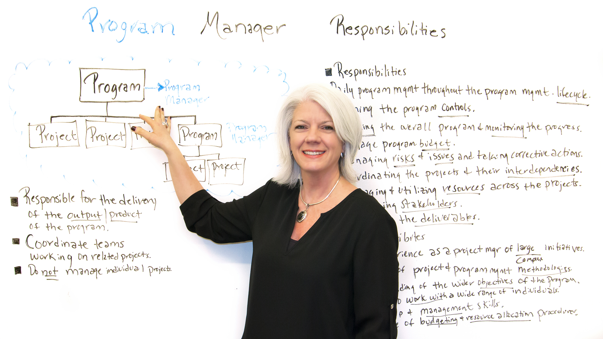 Program Management: Program Manager Responsibilities