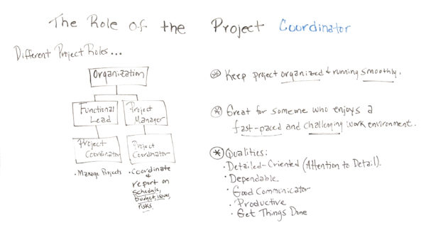 what is the role of a project coordinator?