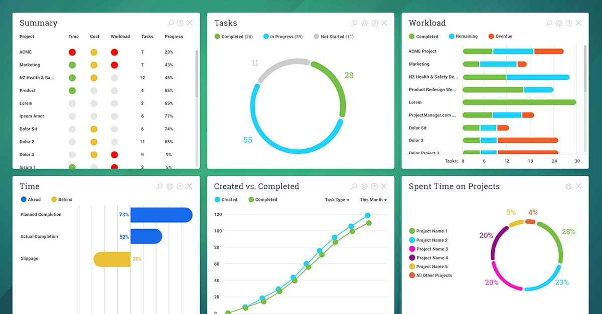 Portfolio level dashboard report in Projectmanager.com