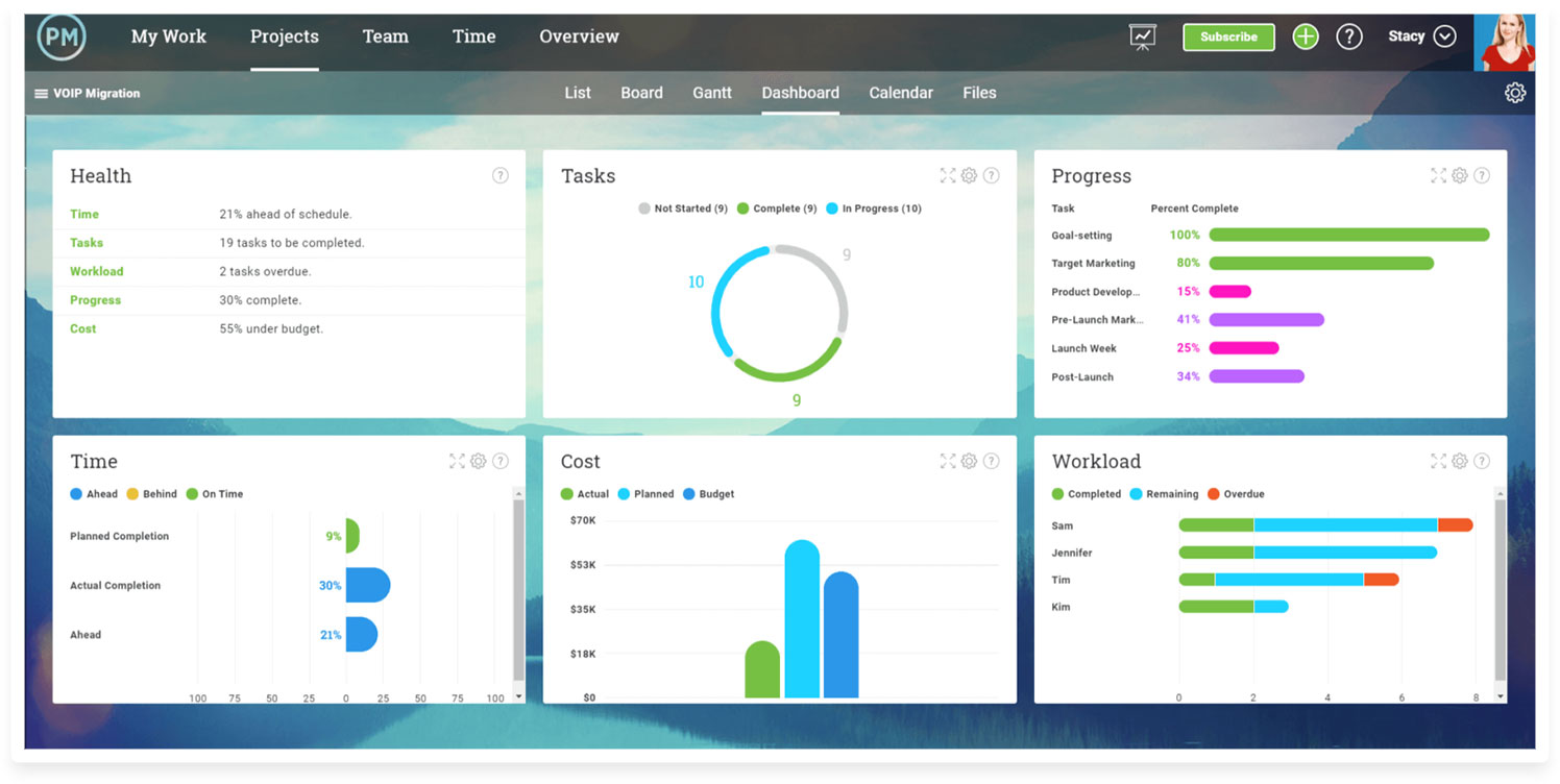 ProjectManager.com Dashboard