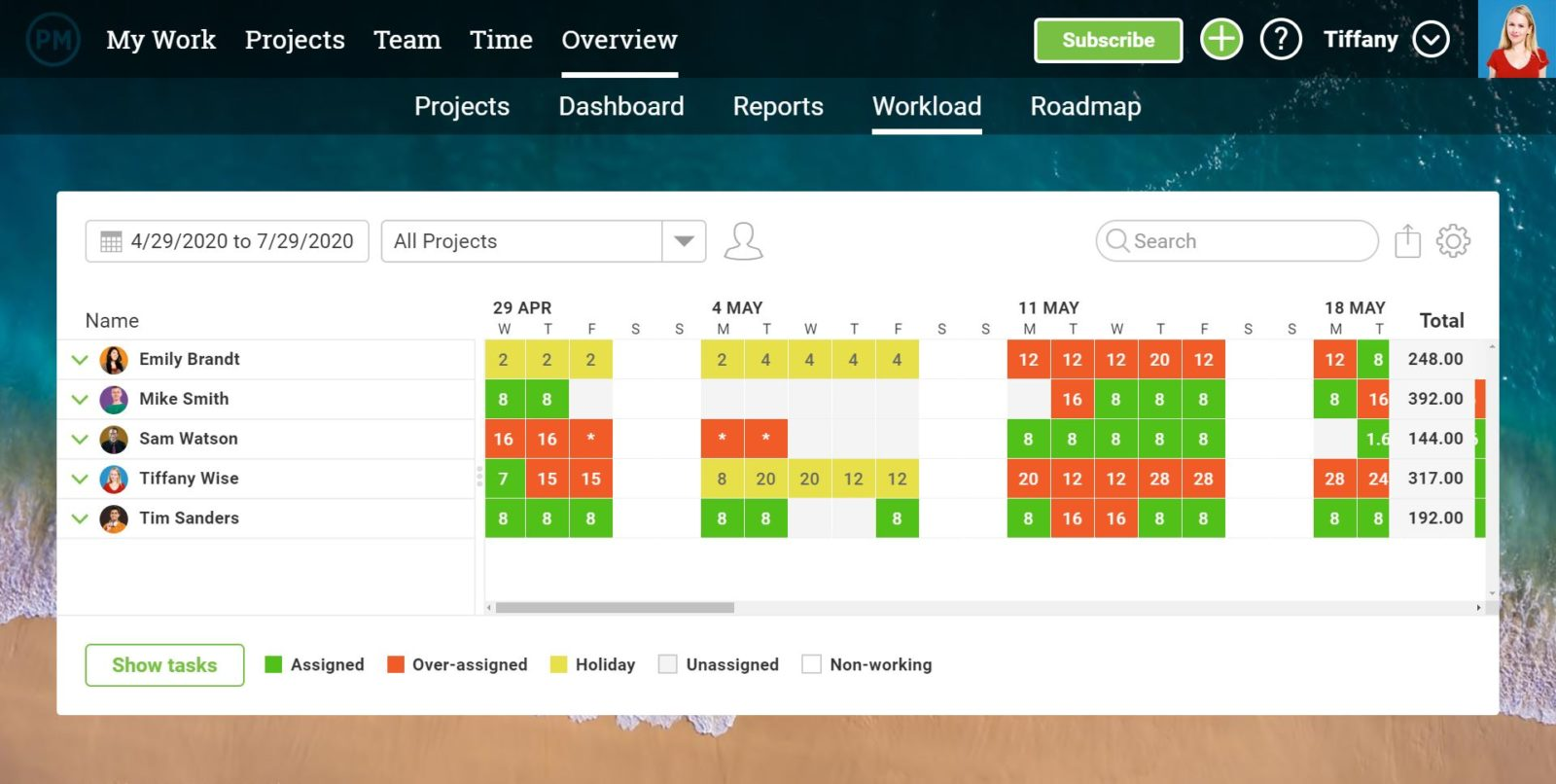 A screenshot of the Overview Workload chart, which shows team members and the amount of tasks they're assigned to.