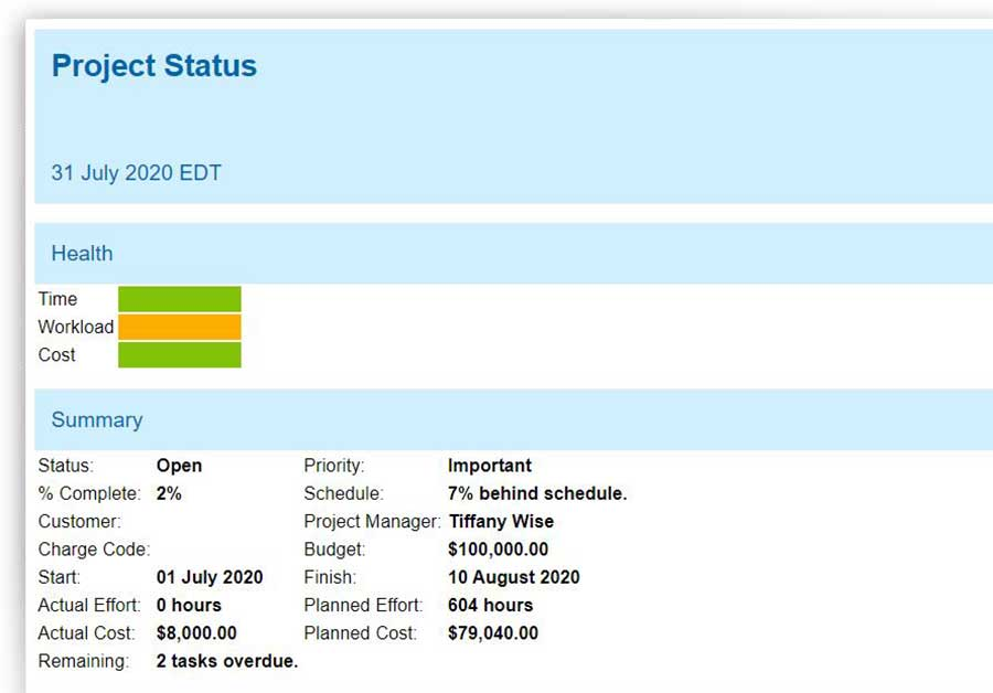 A screenshot of a Project status report, which shows time, workload and cost