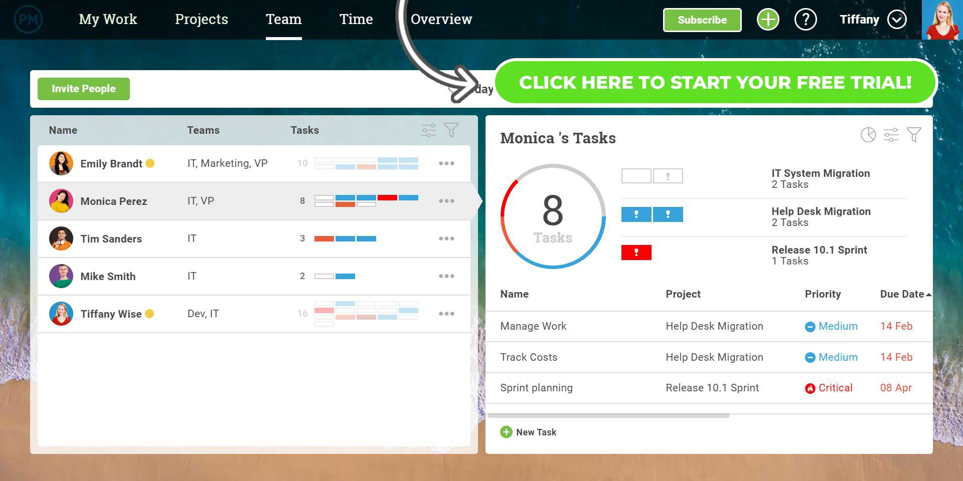 Team management page shows team members, their task and progress