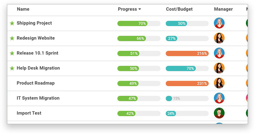 List of projects, progress, cost/budget, manager and team members